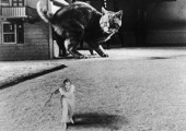 The Incredible Shrinking Man (Universal International 1957)