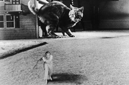 The Incredible Shrinking Man (Universal International 1957)